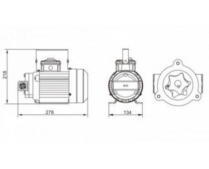 Насос перекачки масла 30л/мин 220В VS0530-220